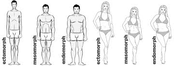 Know your Body Type and Build it Accordingly Health and Fitness Health and Wellness  Type and Build Know your Body it Accordingly